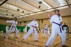 Hayley Taekwondo - Dan Li PF-51.jpg
