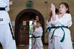 Hayley Taekwondo - Dan Li PF-43.jpg