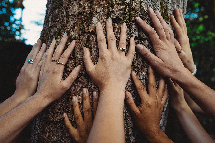 hands (1 of 1).jpg