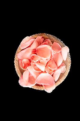 pexels-karolina-grabowska-4041395_edited