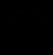 Lauren_Alexis_Photography_Logo.jpg