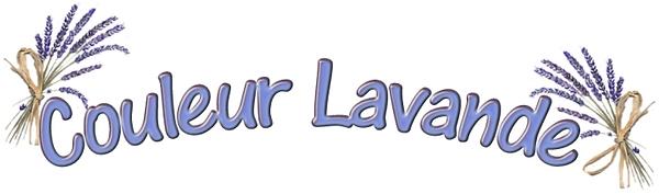 logo couleur lavande.png