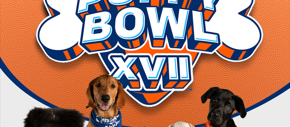 Puppy Bowl XVII: Valkyrie's Improved Data Science Prediction Model