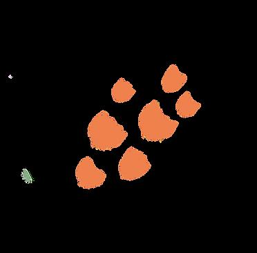 image1 (5).png