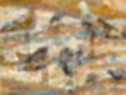 seabirdsNotLooking.jpg