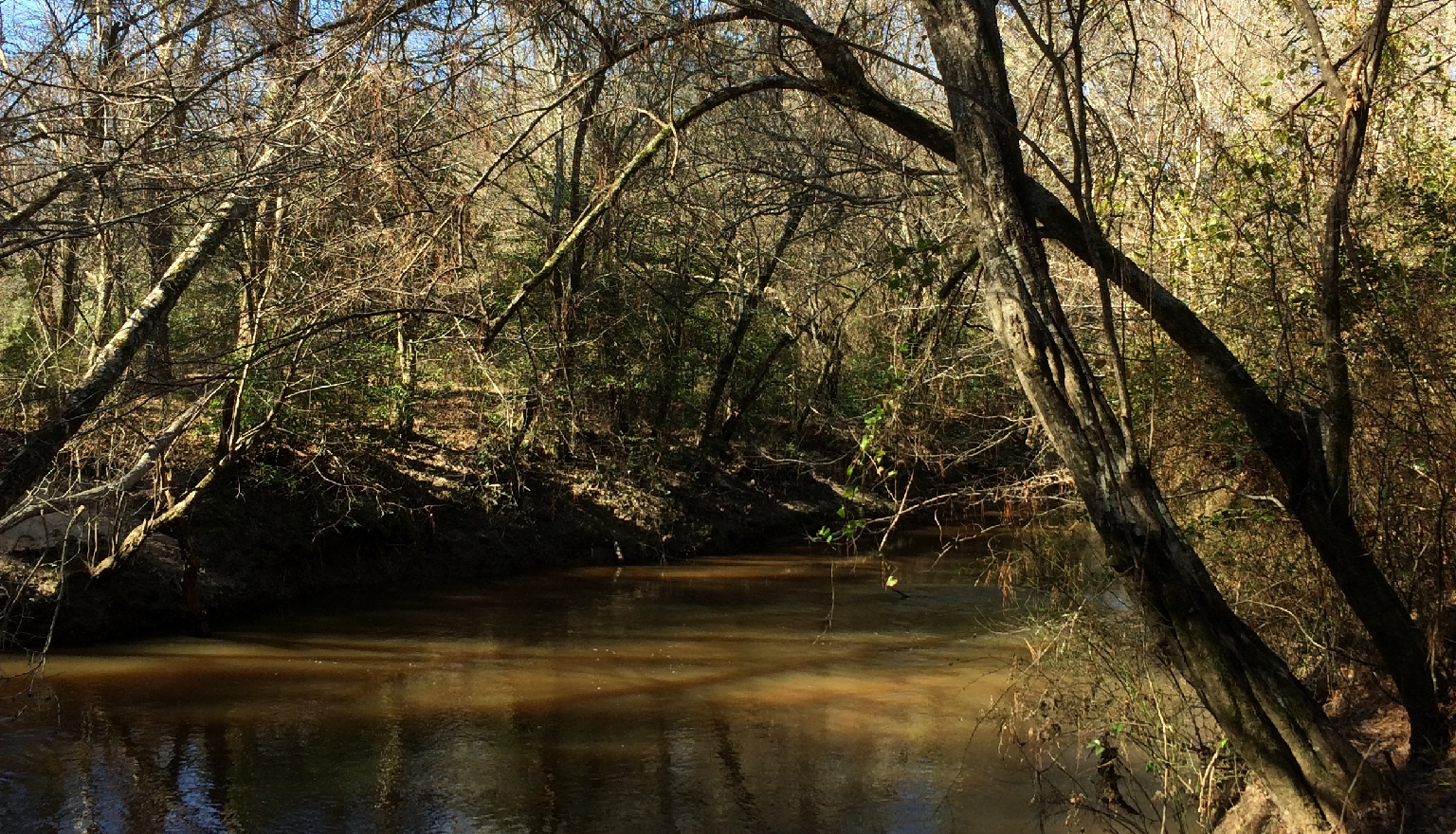 This 116-acre property protects granite outcrops, xeric pine woodlands, mesic hardwood forests, and bottomland hardwood forests with rivercane (Arundinaria gigantea) along Rocky Comfort Creek. William Bartram camped on the property's granite outcrops while trading with Cherokees and Creeks.