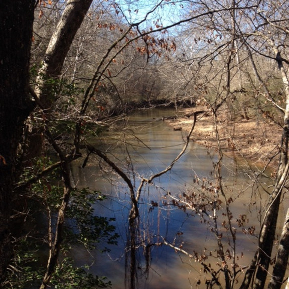 SPRING HIKE ON THE SOUTH FORK OF THE BROAD RIVER