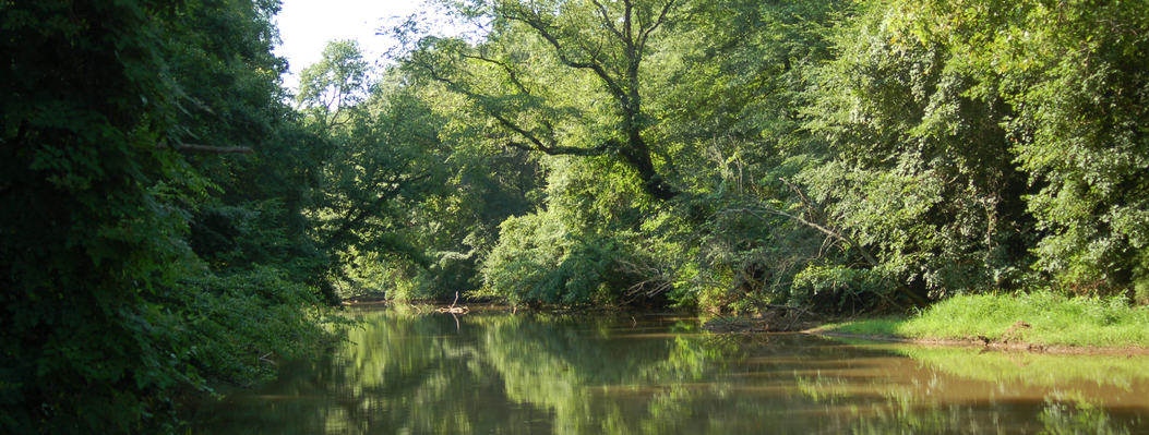 This large property protects bottomland forests along the Apalachee River as well as mixed hardwoods and pines on higher ground.