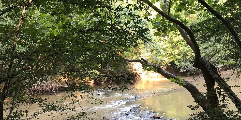 Hike Along the Middle Oconee River at the Cook Conservation Easement