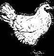 Poulet sans fond.png
