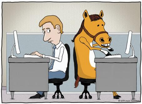 Νέα χρονιά, ίδιος αγώνας για την ευζωία των ιπποειδών - New year same fight against equine abuse
