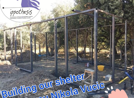 Building our shelter