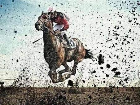 Νέος κώδικας ιπποδρομιών ~ New horse racing code