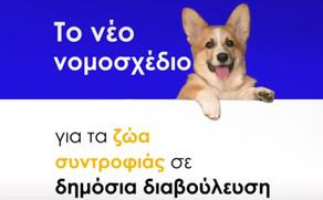 ΙΠΠΟΘΕΣΙΣ στην Δημόσια διαβούλευση για το νέο πλαίσιο  ευζωίας των ζώων συντροφιάς