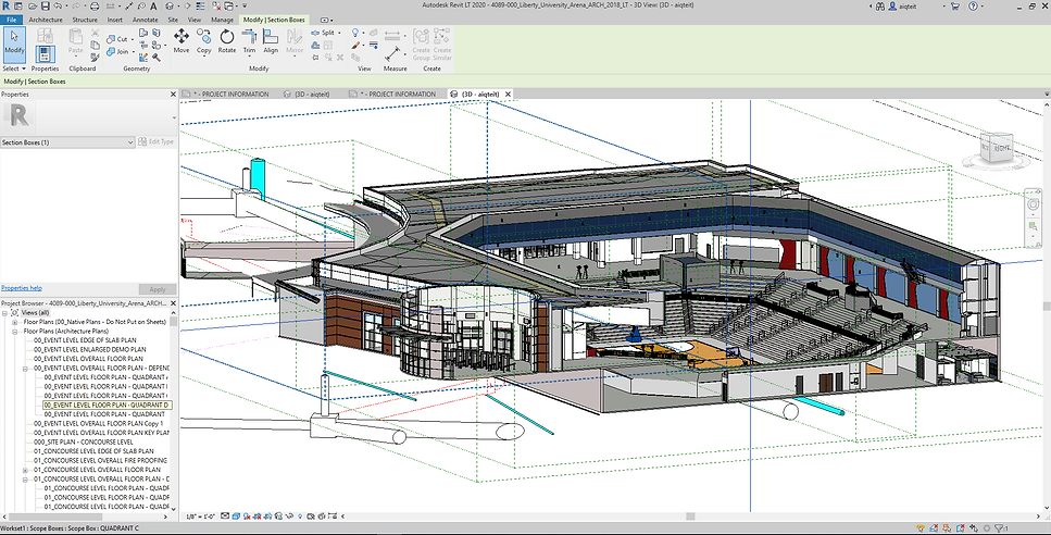 Arena REvit Section 1.PNG
