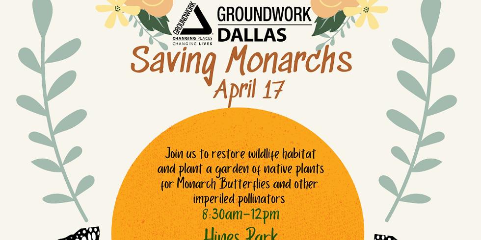 Saving Monarchs