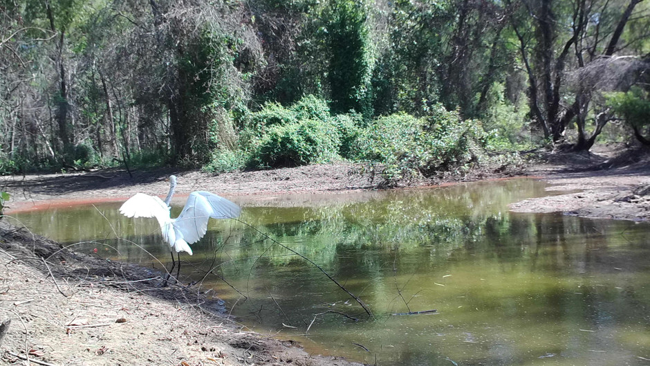 Neches River NWR Increasing in Popularity as Outdoor Destination