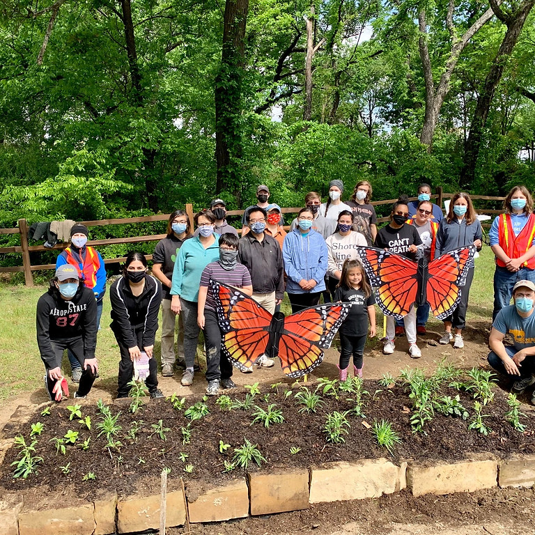Take Action. Protect Monarchs with TCA and Groundwork Dallas!