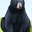 Thumbnail: Adopt a Black Bear