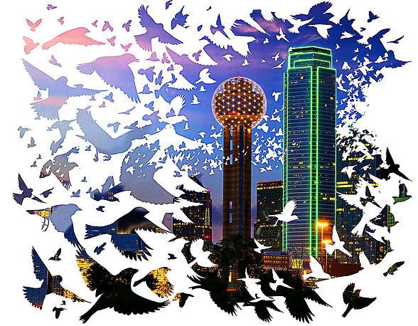 Dallas News Lights Out Laura Bush.jpg