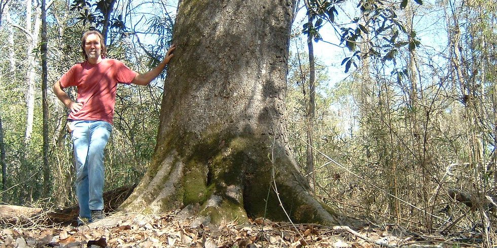 Special TCA Event: Guided Walk in Davy Crockett National Forest