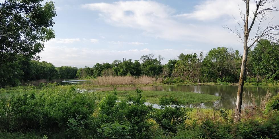 Restore the Trinity River in Dallas