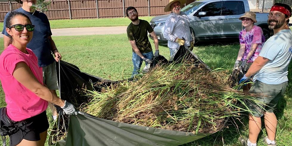 Restore a remnant prairie at Tokalon Park
