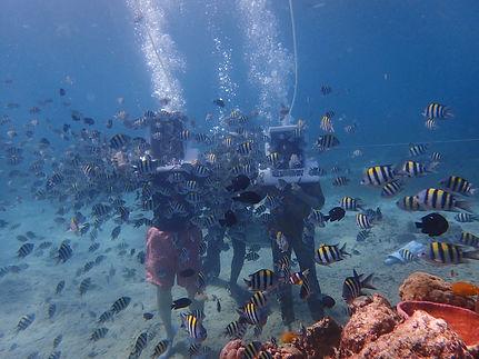 helmet diving.jpg