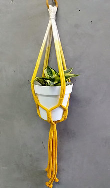 Hanger Lily Degradê
