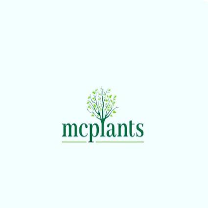 MCPLANTS.png