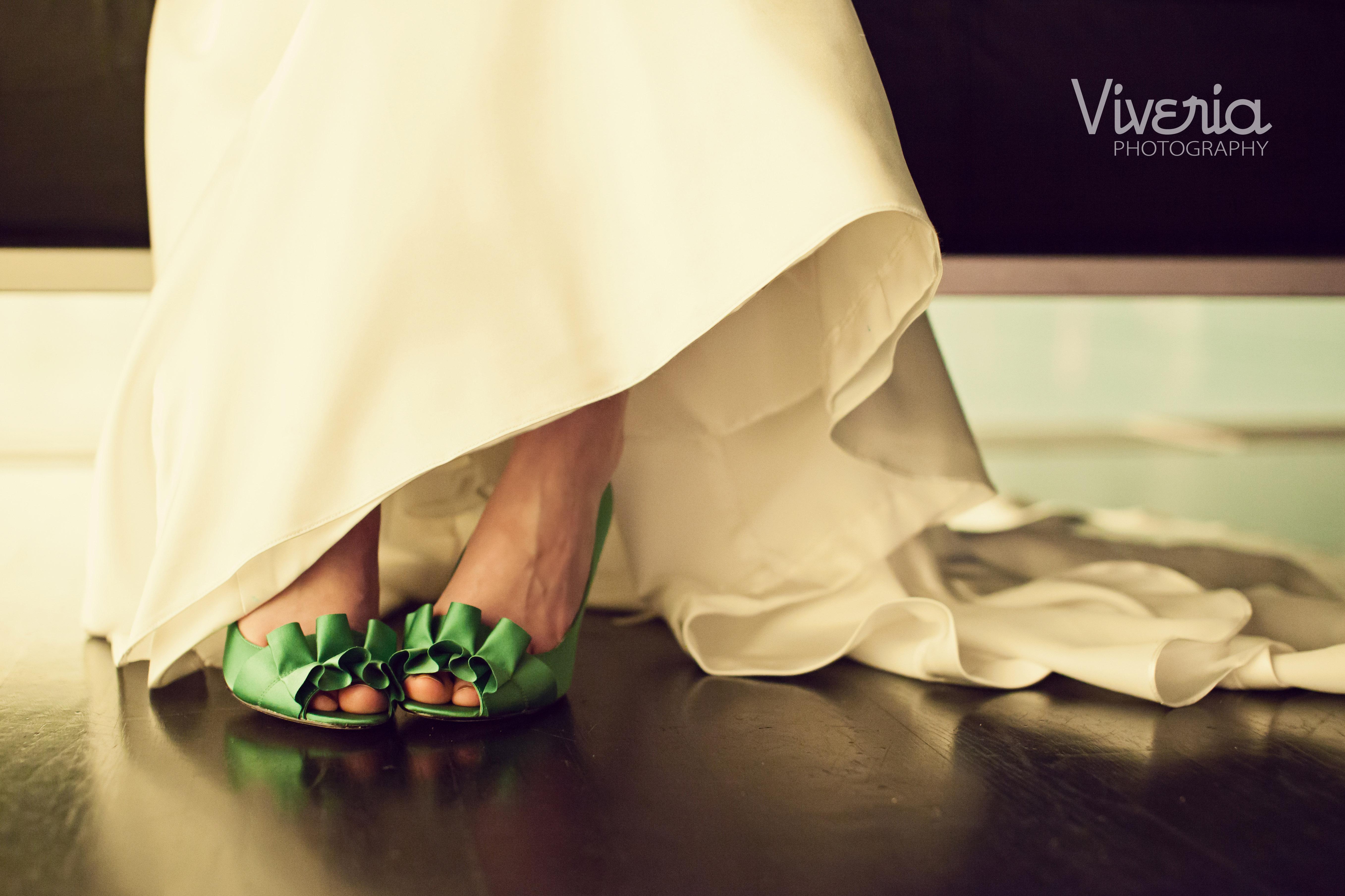 Viveria Photography