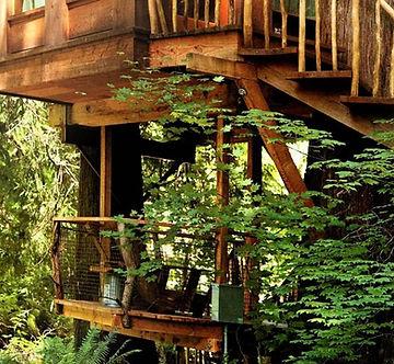 tree platforms