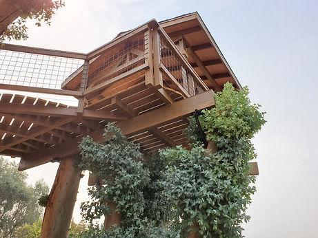 custom-treehouses