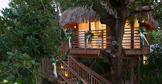 tropical-tree-house-ideas.jpg
