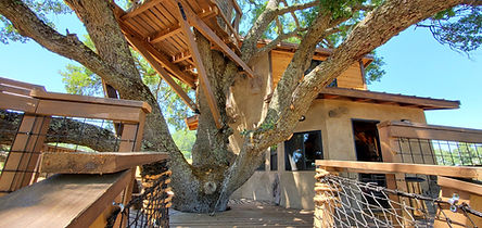 custom-tree-house-builders-california