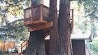 treehouse platform plans pdf