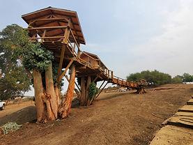 treehouse-builders[1].jpg