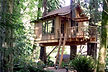tree house builders in northern california