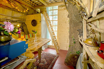 natural-tree-house-inside