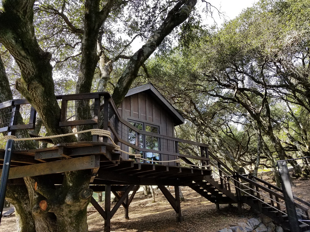 Treehouse designs and plans
