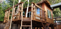 kids-tropical-treehouses