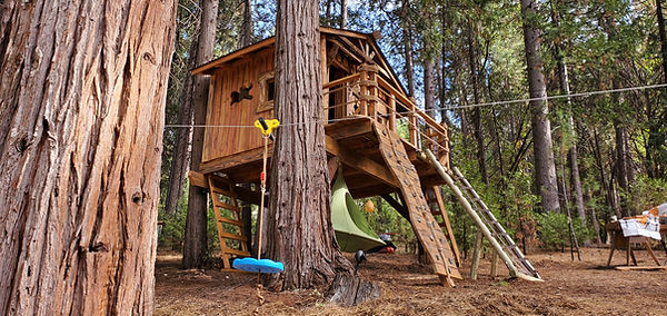 gold-country-kids-treehouse-designs[1].jpg