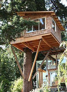 treehouse-braces