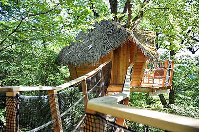 tropical-tree-house-thatch