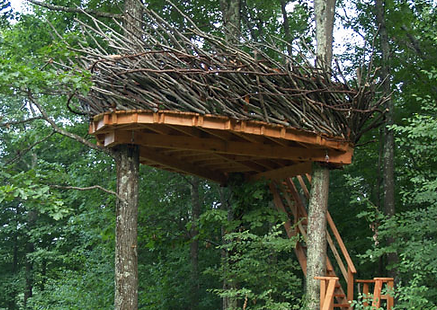 crows nest treehouse