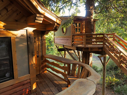 two treehouses