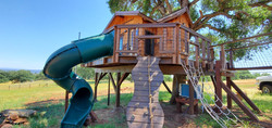 Welcome-to-the-jungle-kids-treehouse2[1]