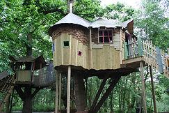 wonky crooked treehouses