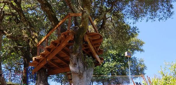 artist-tree deck - treehouse platforms