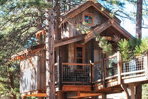Local treehouse builders